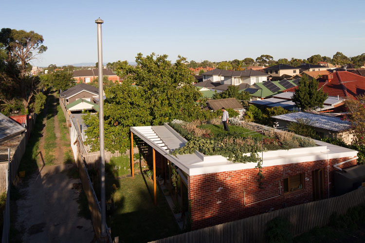 Emilio from Nest Architects waters his Florence Street House green roof in suburban Melbourne